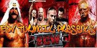 ECW Turmoil