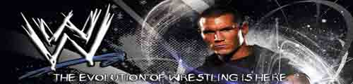 WWEvolution