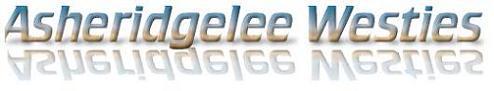Asheridgelee-WHWT-UK