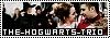 TheHogwartsTrio