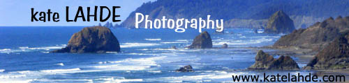 kate Lahde Photography
