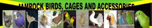 JAMROCK BIRDS, CAGES & ACESSORIES