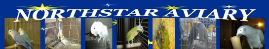 Northstar Aviary