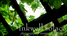 inkwell solace