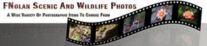 FNolan Scenic And Wildlife Photos