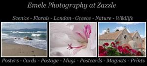 Emele Photography