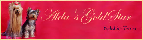 Alda's GoldStar