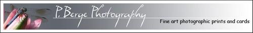 PBerge Photography