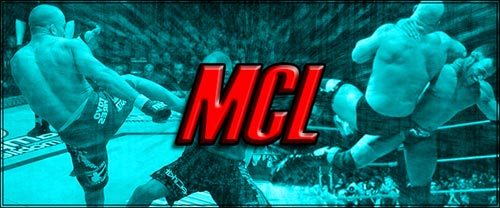 Mixed Combat League