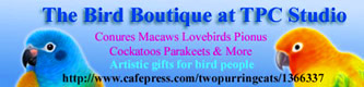 The Bird Boutique at TPC Studio