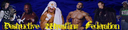 Destructive Wrestling Federation