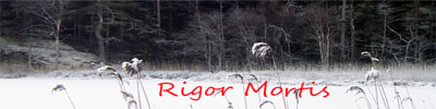 The World of Rigor Mortis