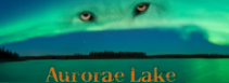 Aurorae Lake:  Intermediate Roleplay