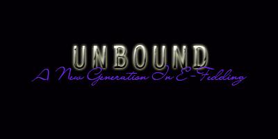 WWE Unbound 2008