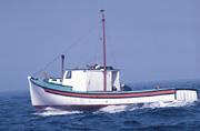 Filamenz, Electronics, Marine, Fishing