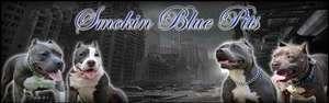 Smokin Blue Pits
