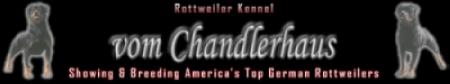 Chandlerhaus Rottweilers