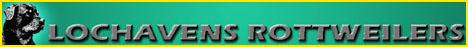 Lochavens Rottweilers