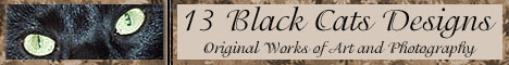 13 Black Cats Designs