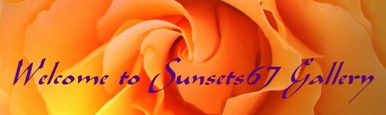 Welcome to Sunsets67 Gallery