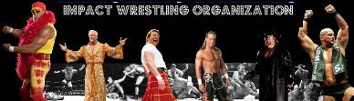 Impact Wrestling Organization