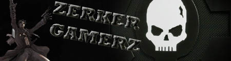 Zerker Gamerz