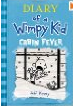 Buy Diary of a Wimpy Kid 6: Cabin Fever Review