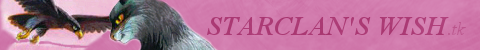 StarClans Wish