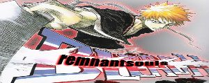 Bleach:Remnant Souls