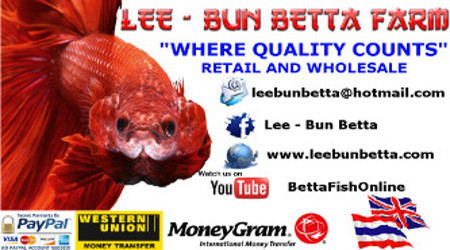 Lee-Bun Betta