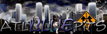 ATL Blue Pits Kennel