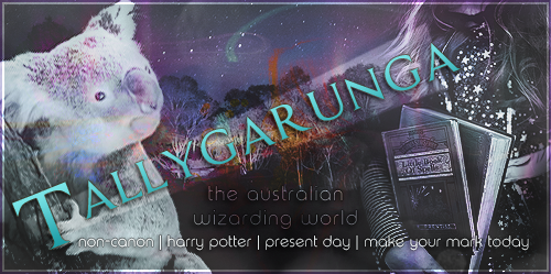 Tallygarunga | Harry Potter like never before