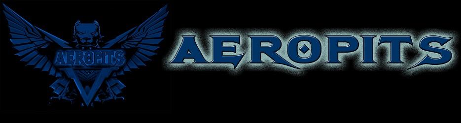 AEROPITS