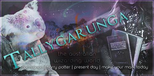 Tallygarunga | Harry Potter like never before