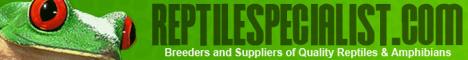 Retile Specialist