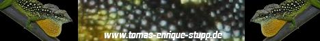 www.tomas-enrique.stupp.de