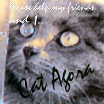 Cat Agora