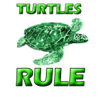 Turtles Rule