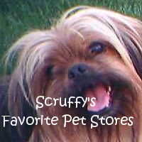 Scruffy's Favorite Pet Stores