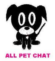 All Pet Chat