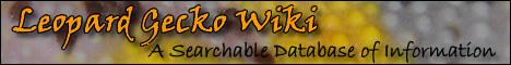 Leopard Gecko Wiki