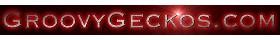 GroovyGeckos.com