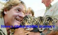 Steve's Global Wildlife Warrior's