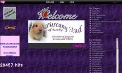 Screenshot of Tuscany Stud