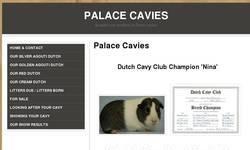 Screenshot of Palace Cavies