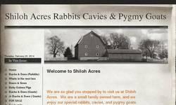 Screenshot of Shiloh Acres Rabbits Cavies & Pygmy Goats