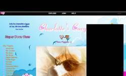 Screenshot of Charlotte's Cavys