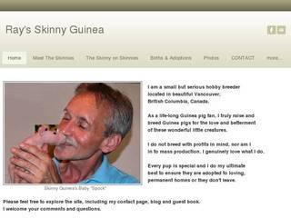 Screenshot of Ray's SKINNY GUINEA