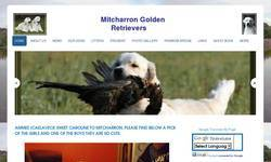 Screenshot of Mitcharron- Golden Retriever