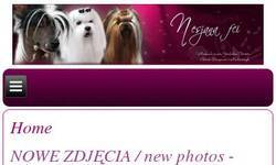 Screenshot of Nesjana - Kennel Yorksire Terrier, Chinese Crested and Maltese